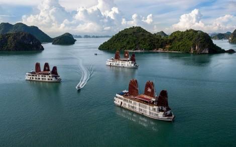 Pelican Halong Cruises - Halong Bay, Quang Ninh